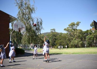 Senior Basketball Court